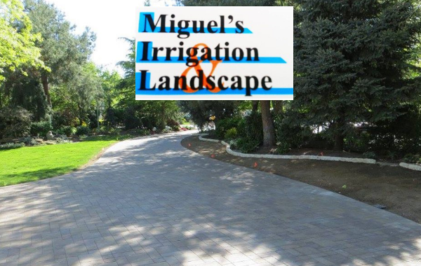 Miguels Irrigation and Landscape
